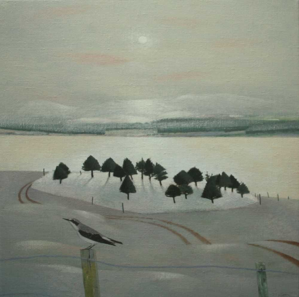 December Trees and Firth  by Tom Mabon