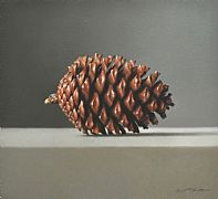 Pinecone by Lucy  McKie ROI