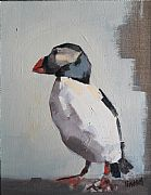 Puffin by Steven Lindsay