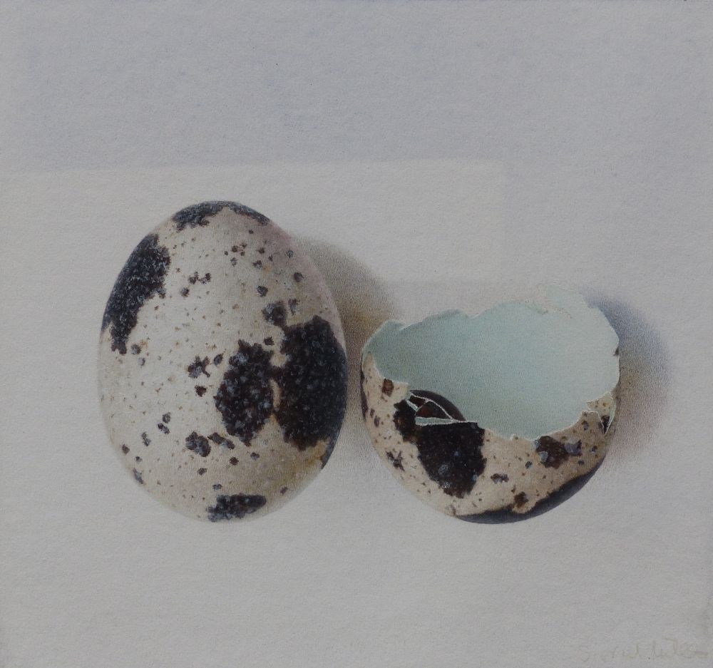 Quail Eggs I by Sigrid Müller