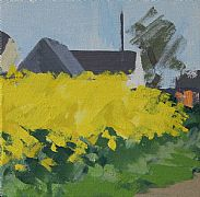 Rapeseed at Soignolles, no.1 by Philip Richardson