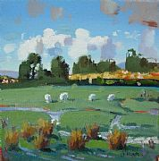 View sheep grazing by ed hunter