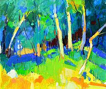 Woodland Light by Marion Thomson