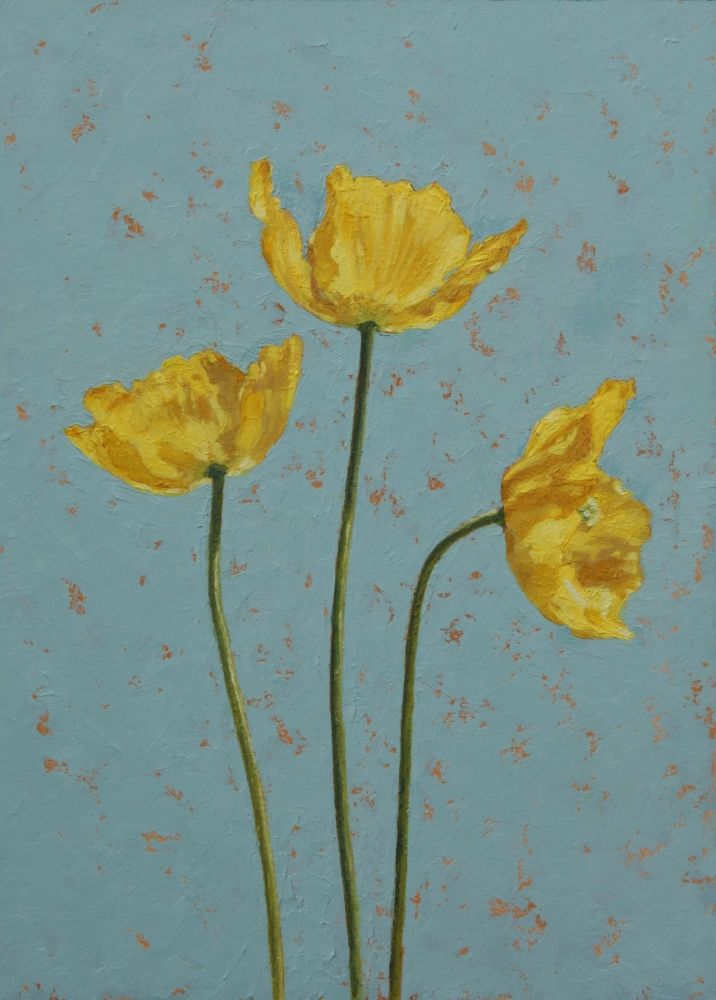 Yellow Poppies by Jane  Kite